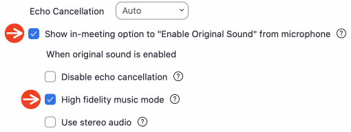 Screen Shot of Zoom Advanced Audio Settings